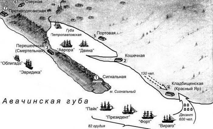 Схема организации Петропавловской обороны.