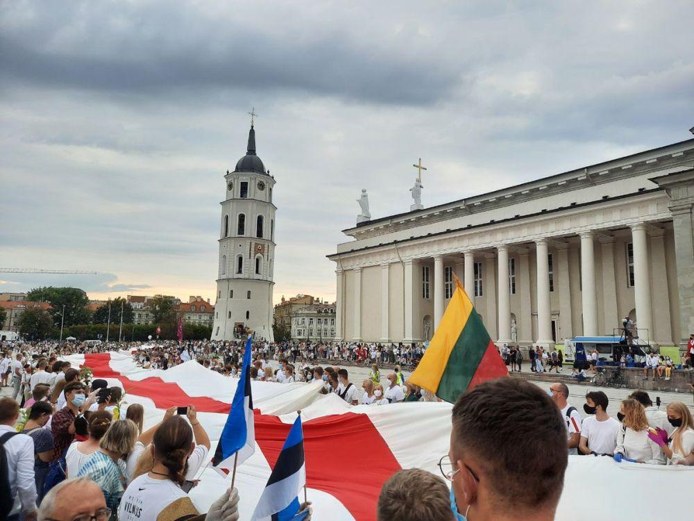 Одна из многочисленных прибалтийский акций в поддержку беломайдана
