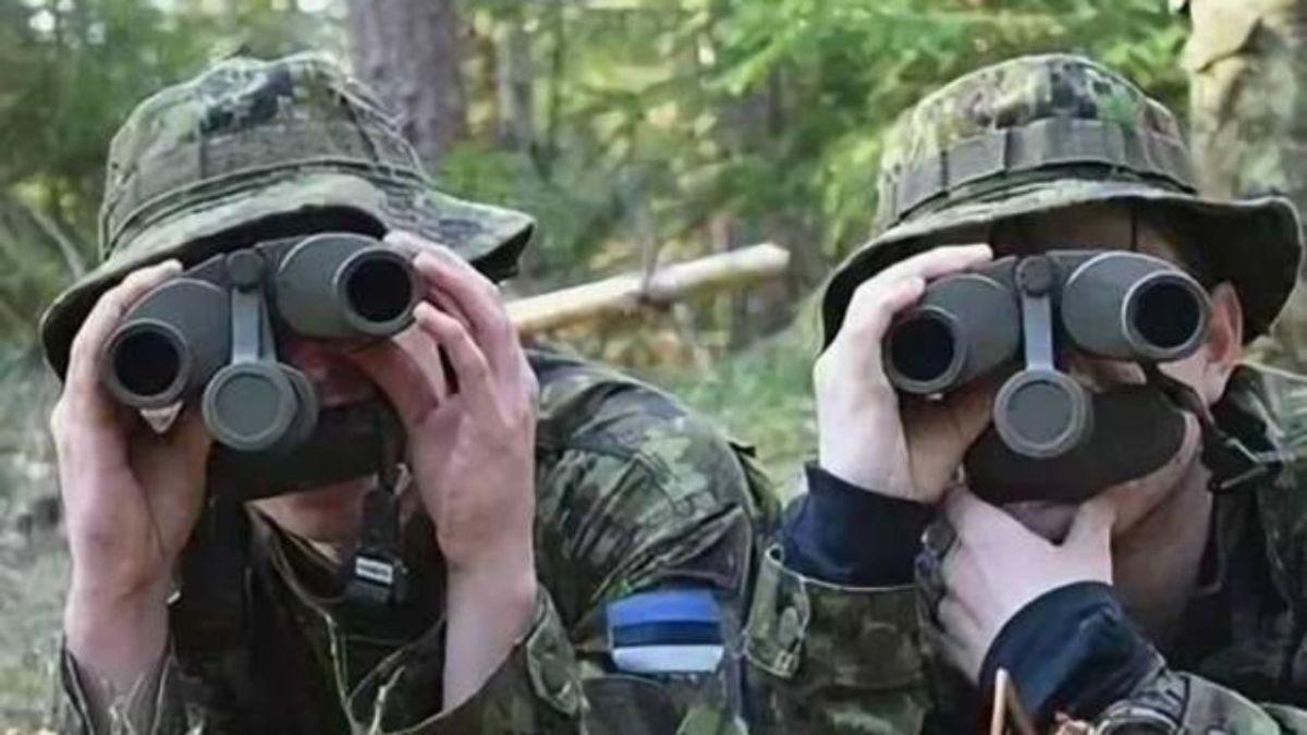 Эстонцы «очень внимательно наблюдают»