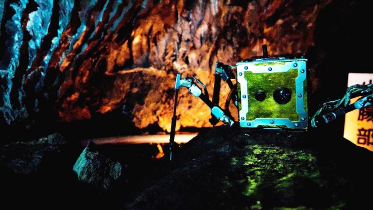 Украина и её пещерные лунатики